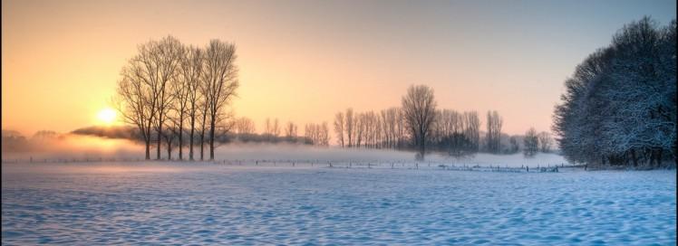 Winter Sun by © Nietnagel / Flickr