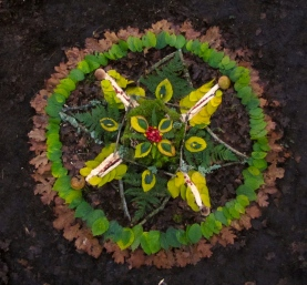 The Art of Nature Mandalas