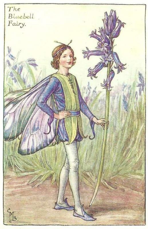 The Bluebell Flower Fairy