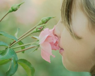 Don't Forget to Stop and Smell the Roses ©Joe Penniston/Flickr
